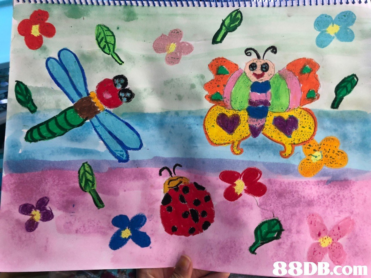 Insect,Textile,Child art,