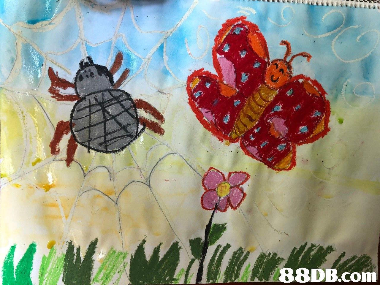 Turtle,Sea turtle,Tulip,Art,Flower