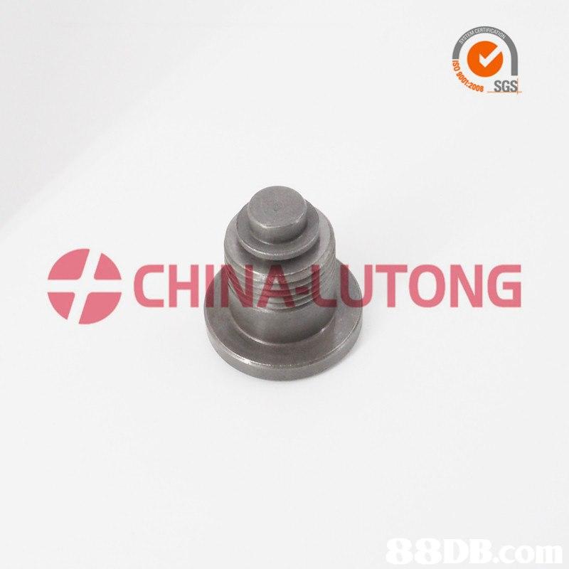 SGS CHINA-LUTONG