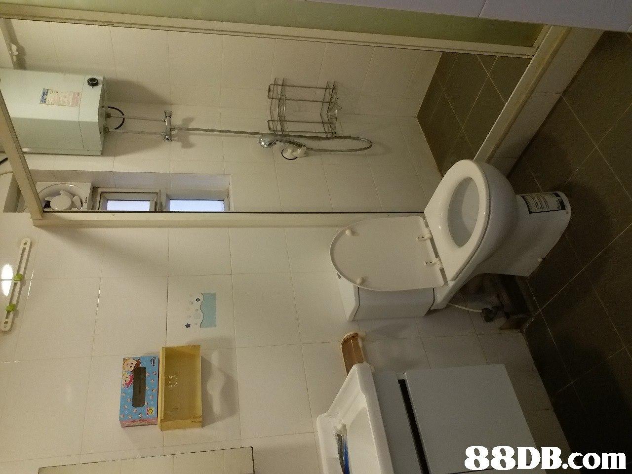 Property,Room,Bathroom,Shelf,Plumbing fixture