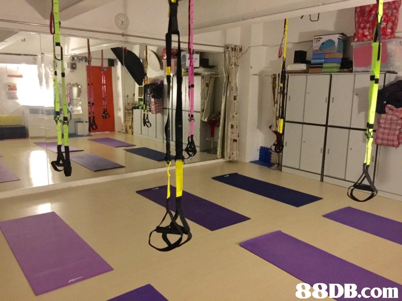 Floor,Room,Physical fitness,Flooring,Crossfit