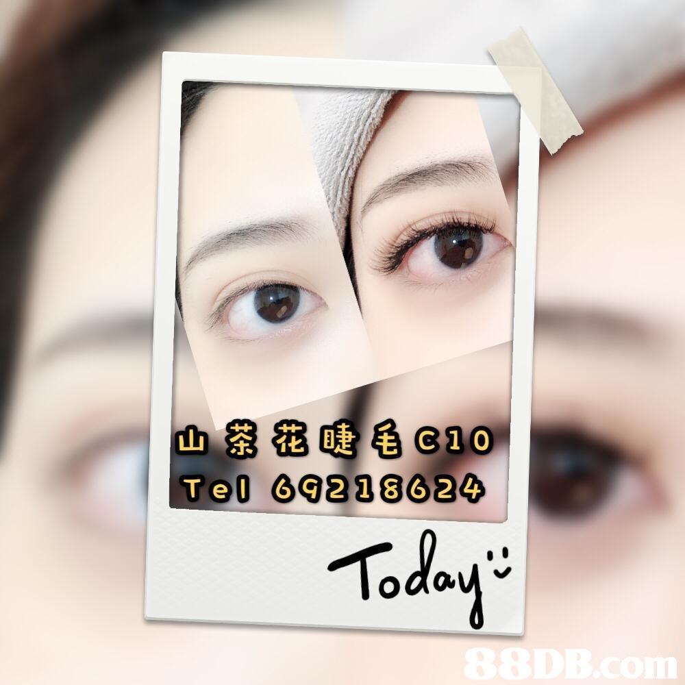 Telll 92 186 2 Toda ou  Eyebrow,Face,Eyelash,Skin,Eye