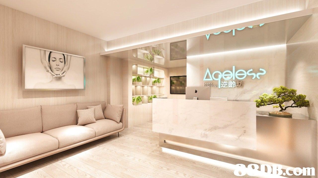 s 1遻齡 eauty  Property,Room,Interior design,Living room,Ceiling