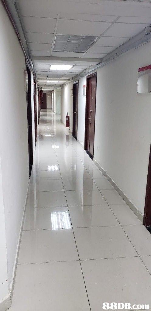 Floor,Ceiling,Wall,Room,Flooring