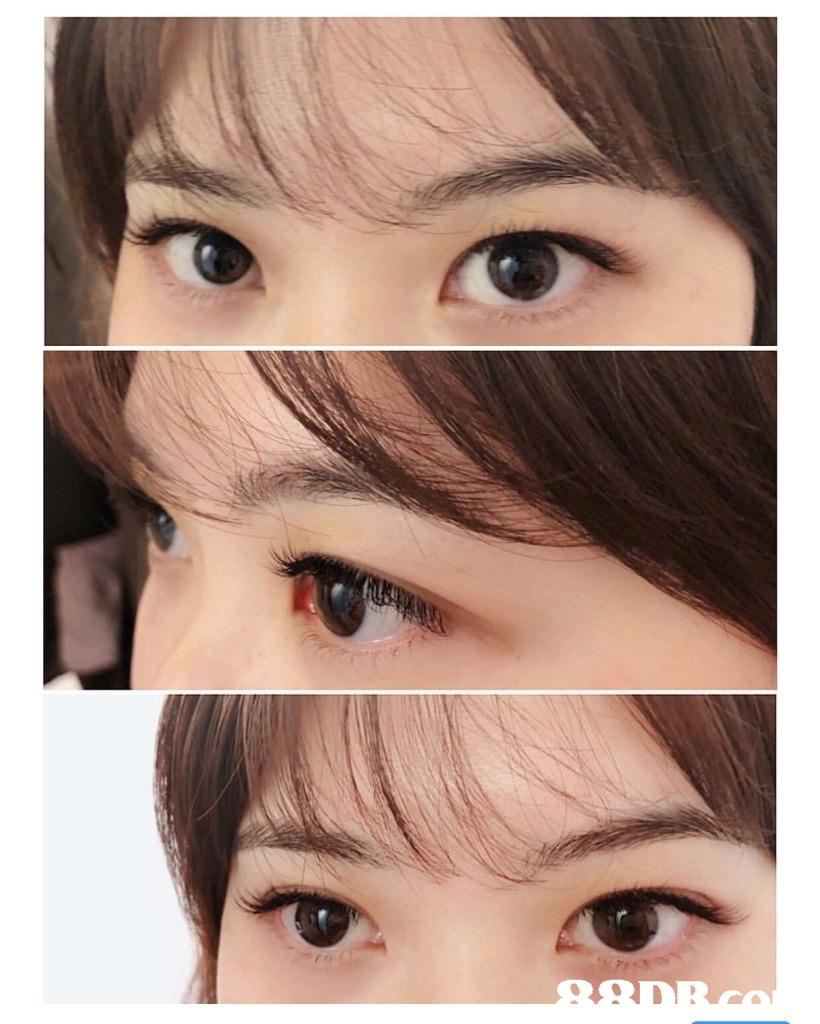 Eyebrow,Face,Hair,Eye,Eyelash