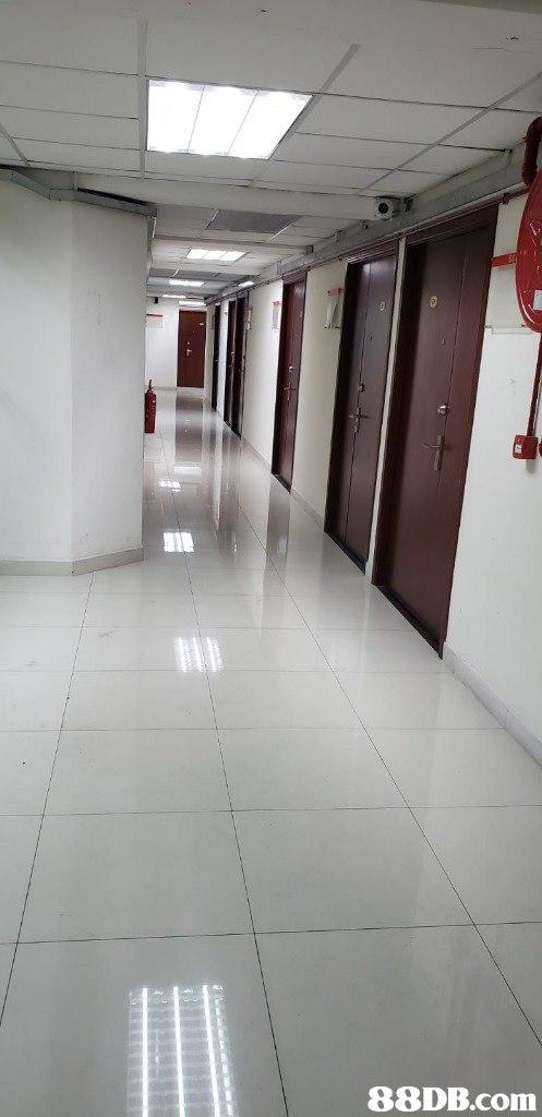 Floor,Tile,Flooring,Wall,Building