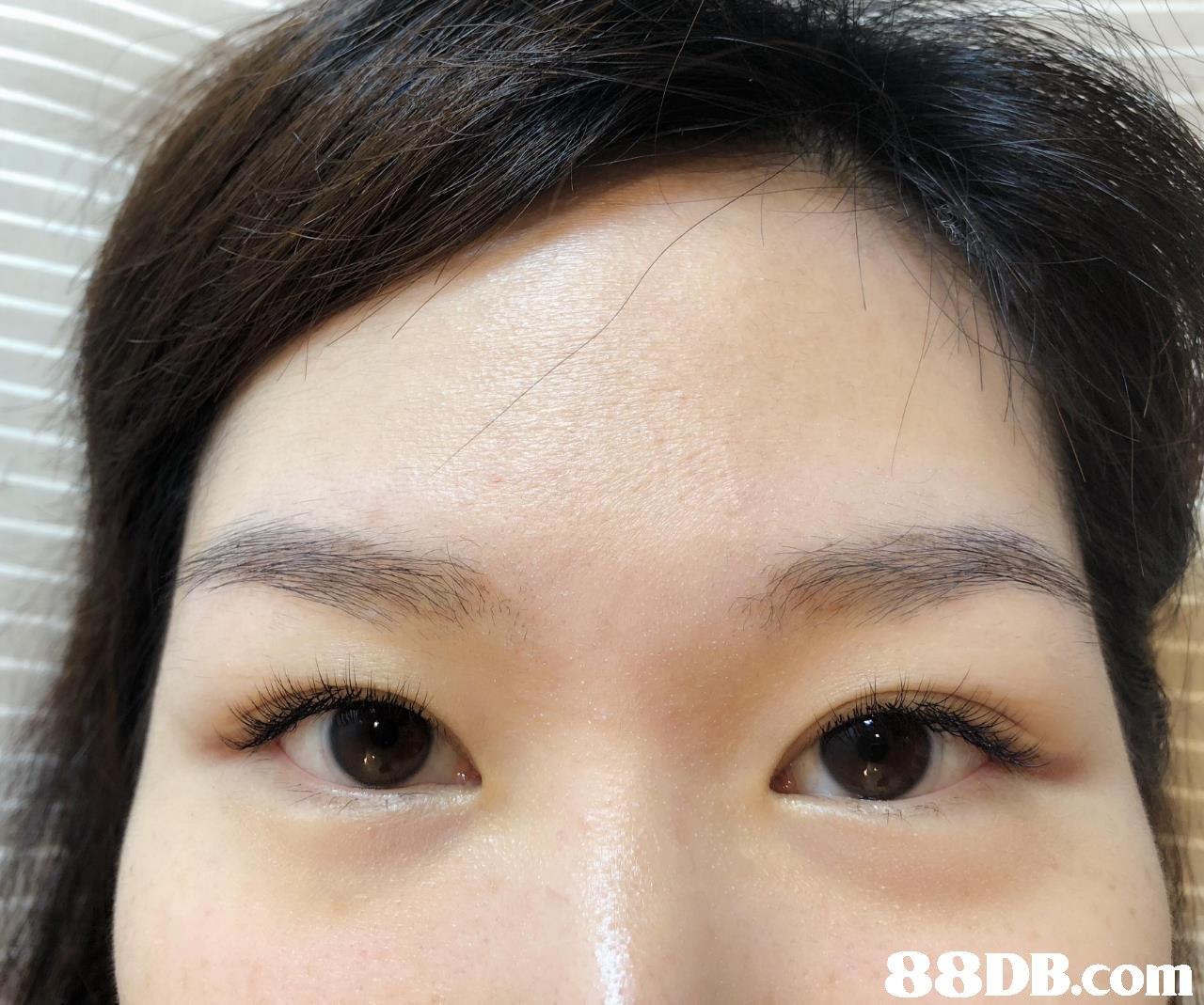 Eyebrow,Face,Forehead,Hair,Nose