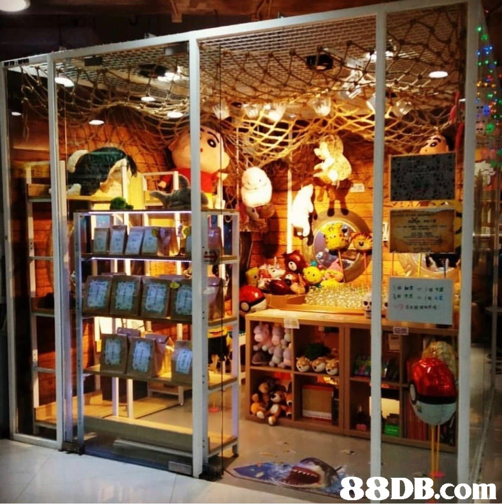 Building,Display case,Retail,Display window,
