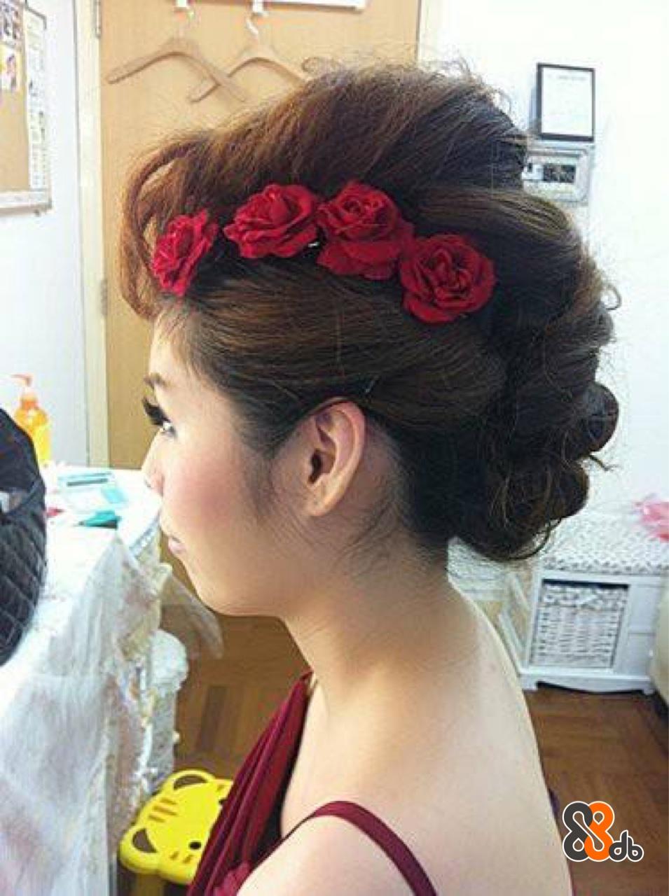 Hair,Hairstyle,Chignon,Forehead,Bun