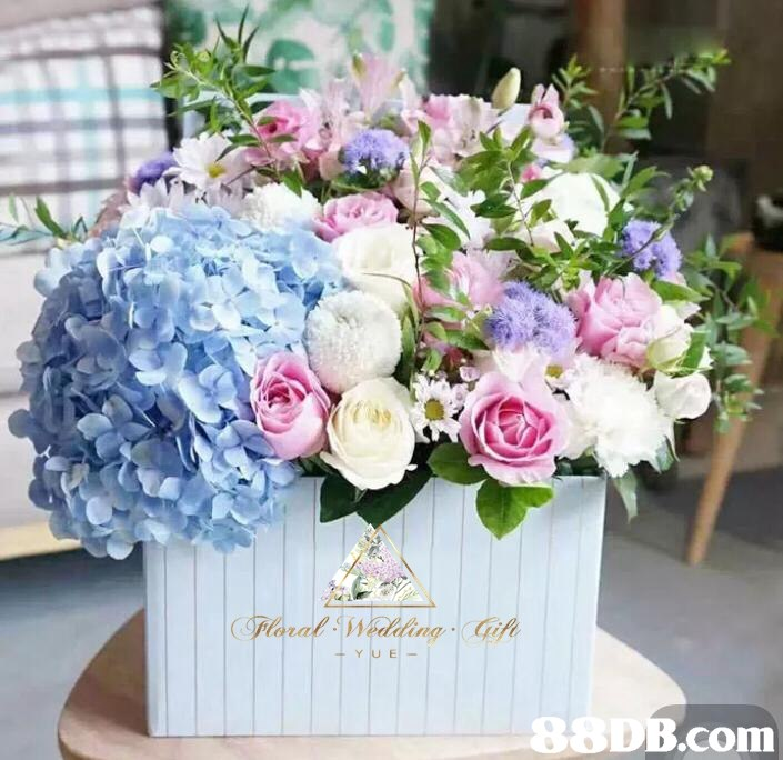 6DB.com  Flower,Bouquet,Flower Arranging,Floristry,Floral design