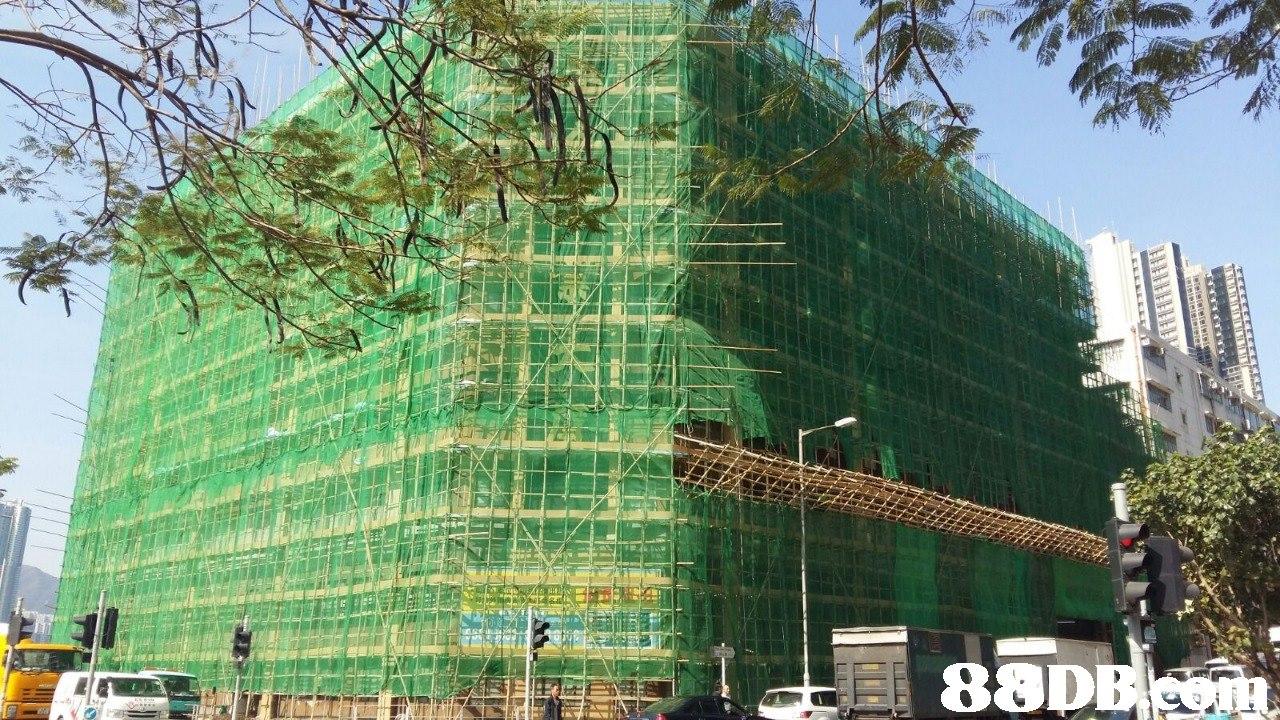 Architecture,Tree,Building,Condominium,Metropolitan area
