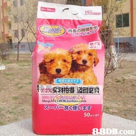 450 特長の時間を サイズ 150-6 細菌を抵抗する 10096实物拍摄盗因墜究 Shop3511A830aobao.com ス:A 良く夜います. 50A   Dog,Canidae,Dog breed,Dog food,Puppy