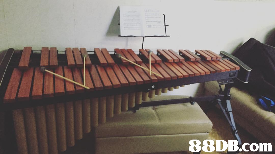 Vibraphone,Xylophone,Musical instrument,Marimba,Metallophone