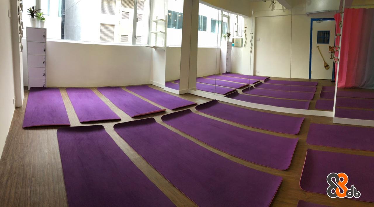 Floor,Purple,Flooring,Carpet,Violet