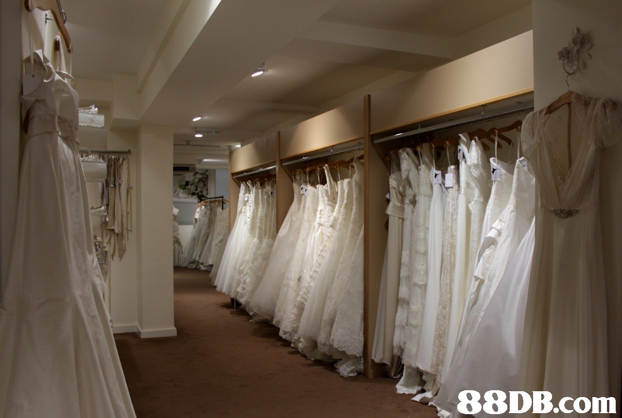 Dress,Clothing,Wedding dress,Gown,Bridal clothing