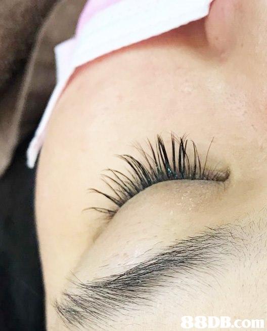 B.com  Eyebrow,Eyelash,Eye,Skin,Eyelash extensions