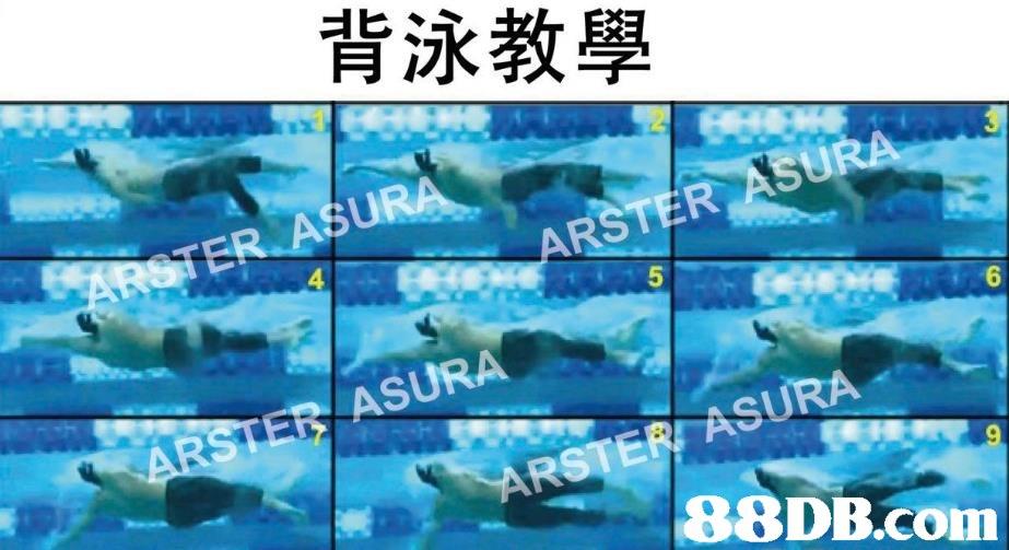 背泳教學 6 ASURA   Marine biology,Fish,Water,Marine mammal,Organism
