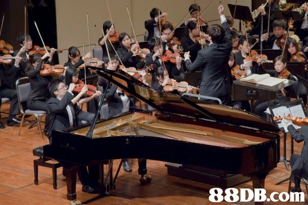 Music,Pianist,Musician,Recital,Musical instrument