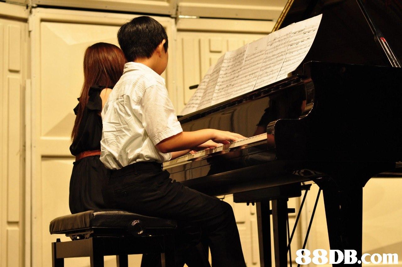 8DB.com  Pianist,Recital,Music,Musician,Fortepiano
