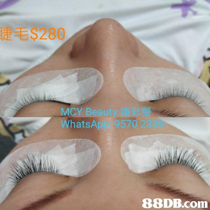 睫毛 $280 MCY Beauty媚彩瑩 WhatsApp: 9570 2339   Eyelash,Nose,Skin,Eyebrow,Eye