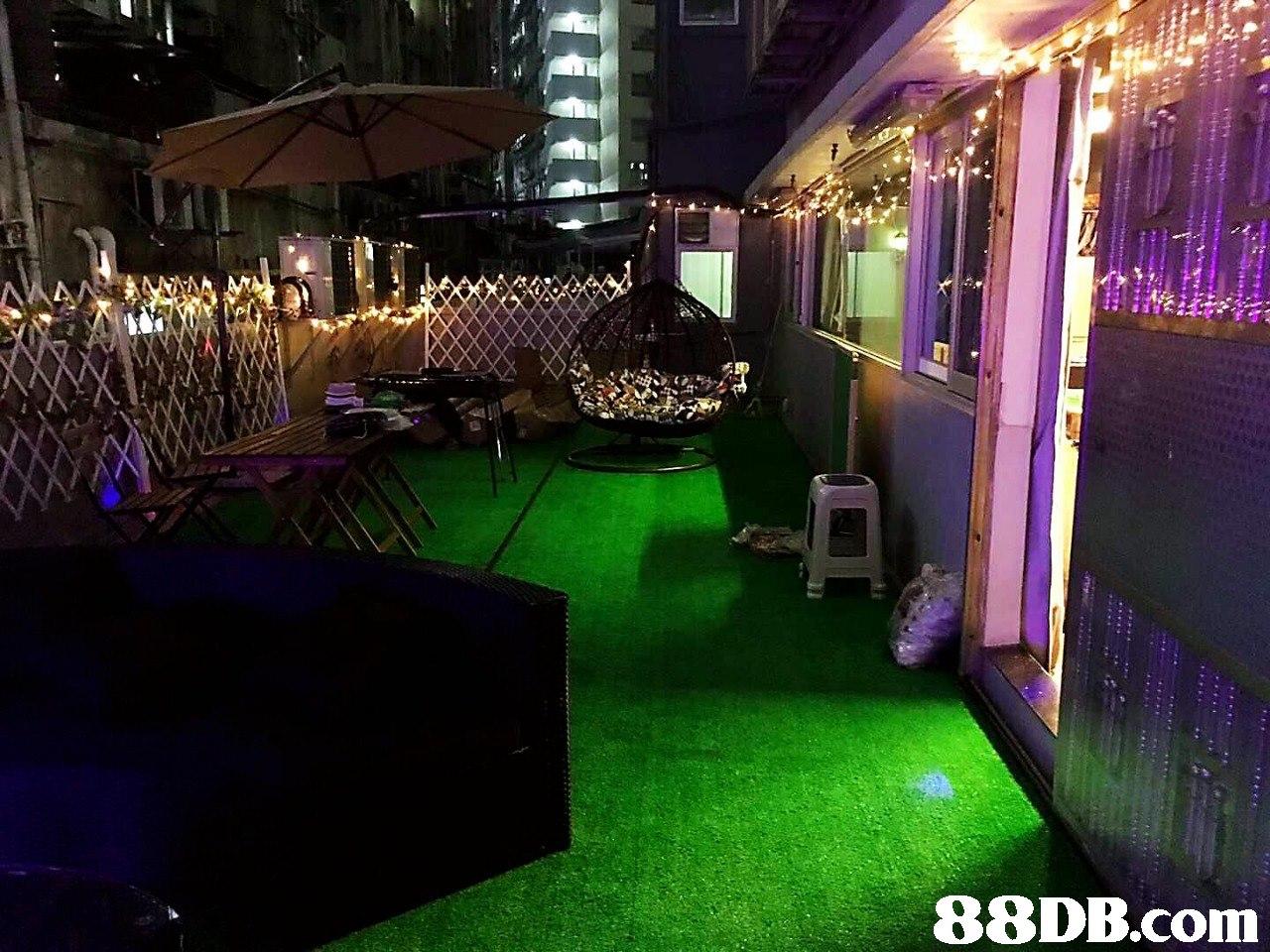 Lighting,Purple,Night,Grass,Backyard
