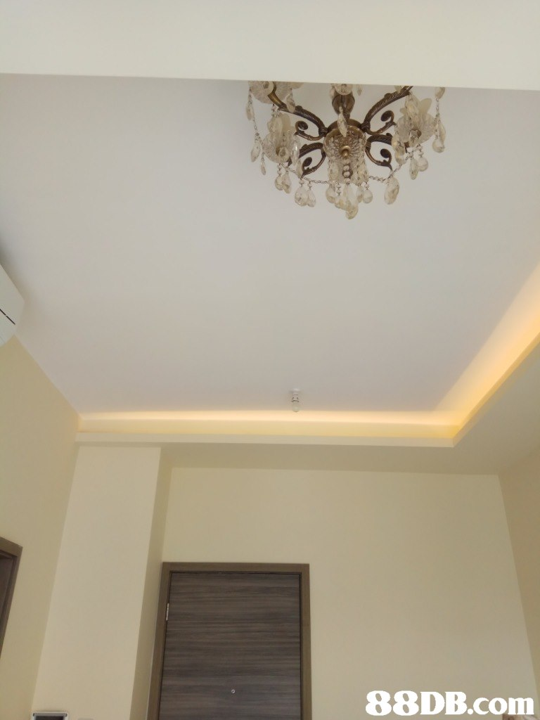 Ceiling,Property,Molding,Plaster,Wall