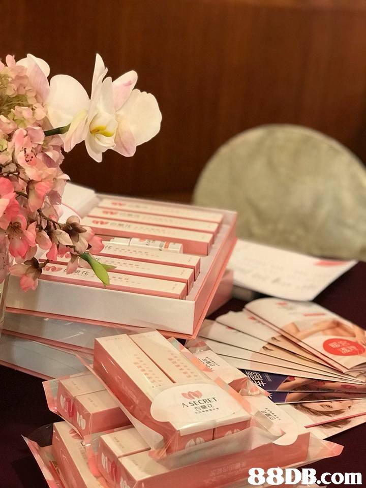 A SECRET   Pink,Flower,Plant,Room,Still life