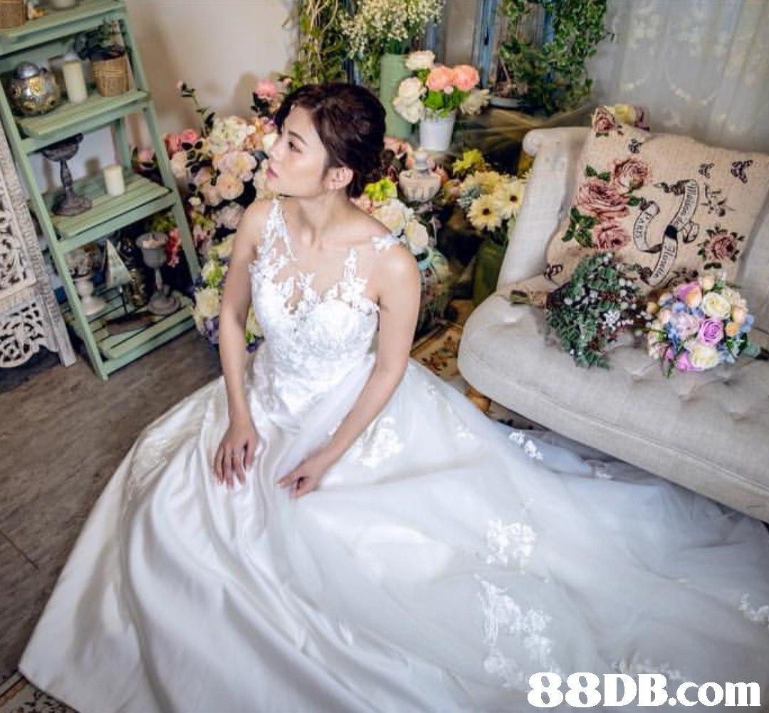 Gown,Dress,Wedding dress,Bride,Clothing