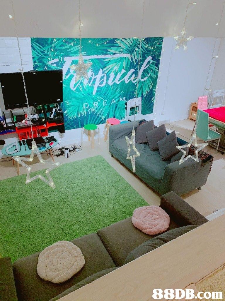 Green,Interior design,Room,Living room,Furniture