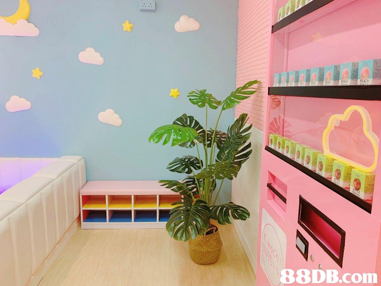 PEACH PEACH PEACH   Room,Wall,Pink,Interior design,Furniture