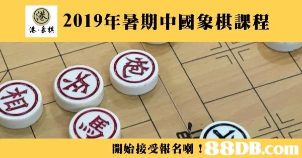 2019年暑期中國象棋課程 港,象棋  開始接受報名喇!: 3) ;  Games,Indoor games and sports,Font,Floor,