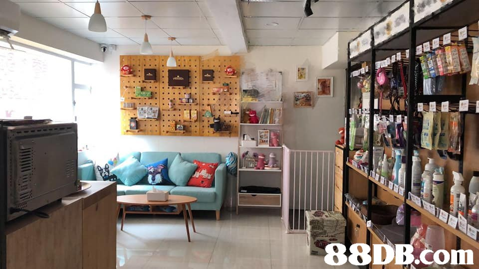 Building,Interior design,Property,Room,Ceiling