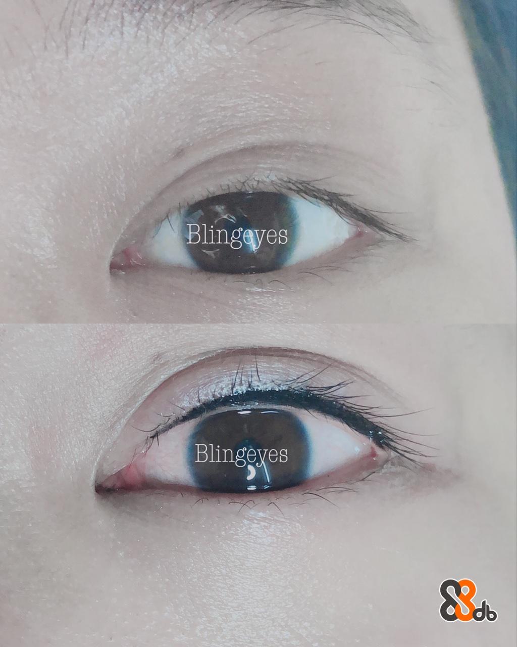 Blingayes Blingèves  Eyebrow,Eyelash,Eye,Face,Skin
