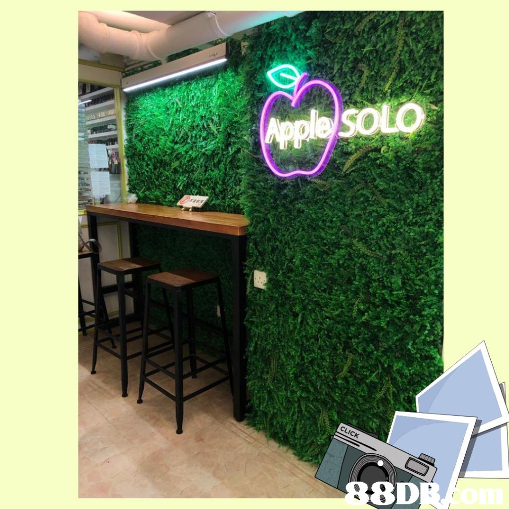 8D oim  Green,Grass,Table,Room,Interior design