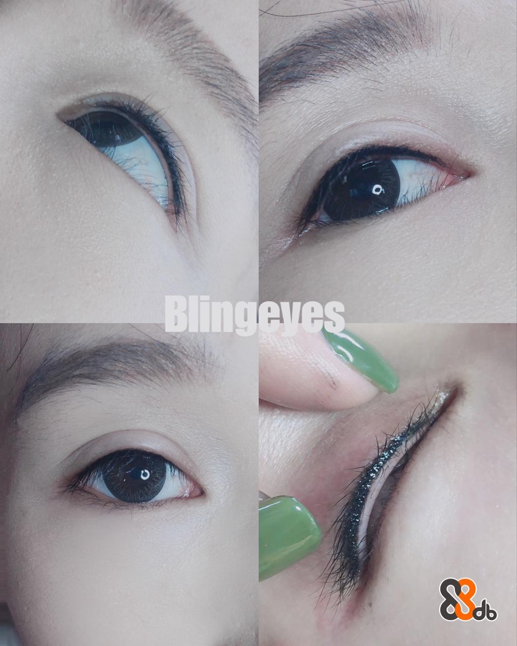 Blingeves  Eyebrow,Eyelash,Face,Eye,Green