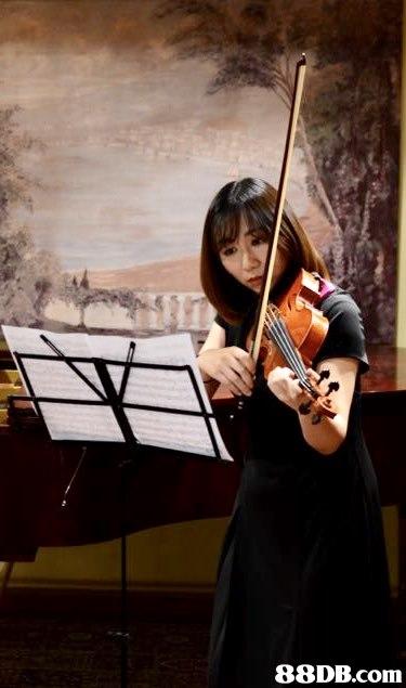 Violinist,Violist,Violin,Musical instrument,String instrument