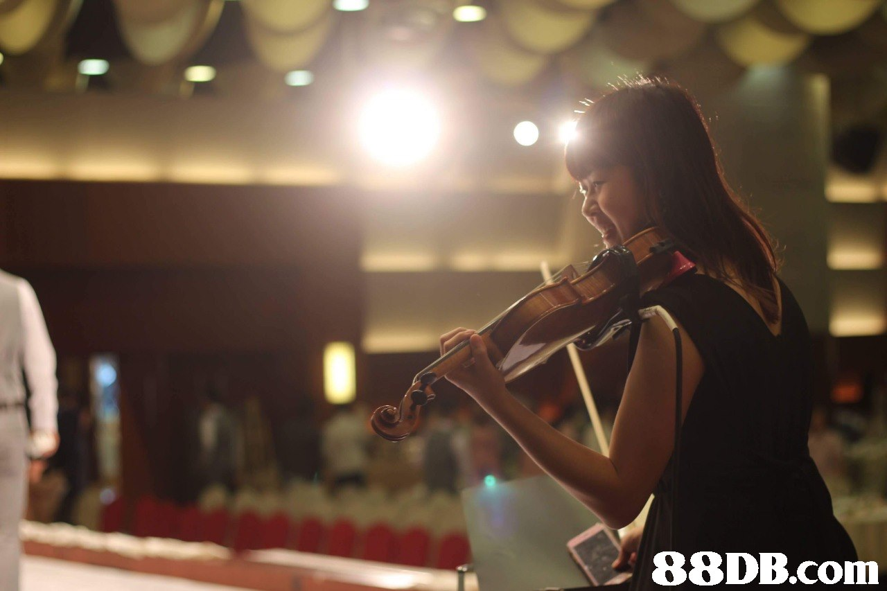Music,Musical instrument,Photography,Musician,Performance