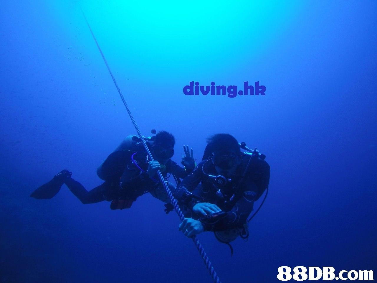 diving.hlk   Scuba diving,Underwater diving,Divemaster,Underwater,Blue