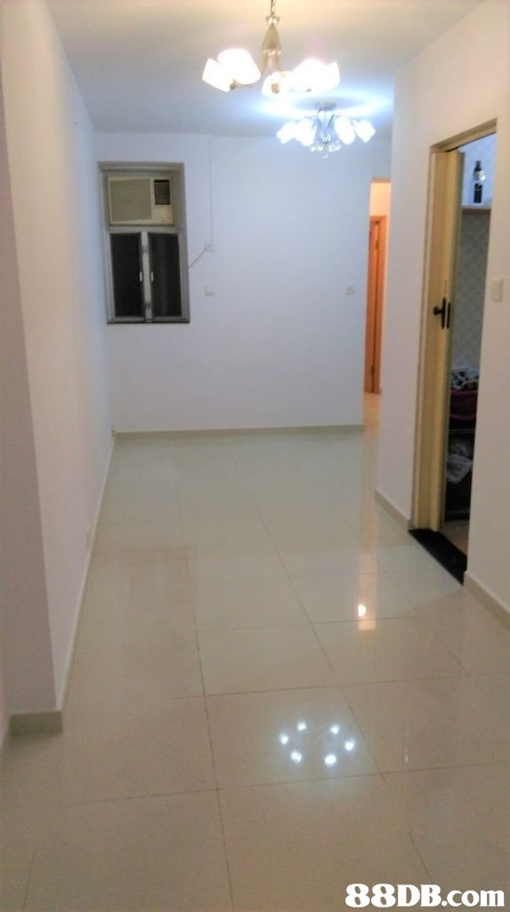 Floor,Property,Room,Flooring,Ceiling