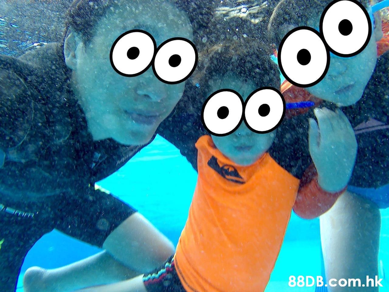 .hk  Stuffed toy,Aqua,Plush,Turquoise,Animation