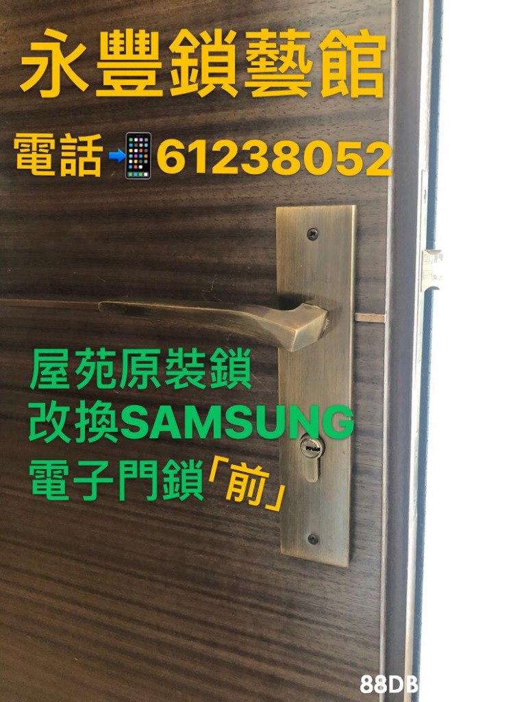 永豐鎖藝館 電話 6123805 屋苑原裝鎖 改換SAMSUNG 電子門鎖「 88D  Font,Technology,