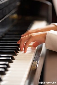 .hk  Piano,Pianist,Musical instrument,Musician,Finger