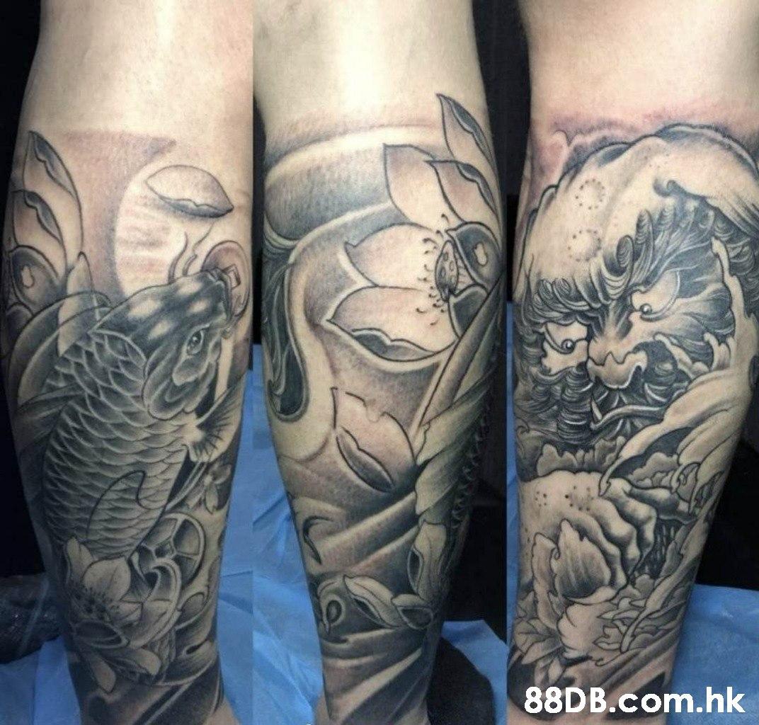 350 .hk  Tattoo,Arm,Human leg,Leg,Joint