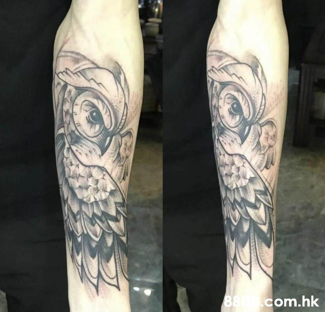 88 com.hk  Tattoo,Arm,Wing,Human body,Human leg
