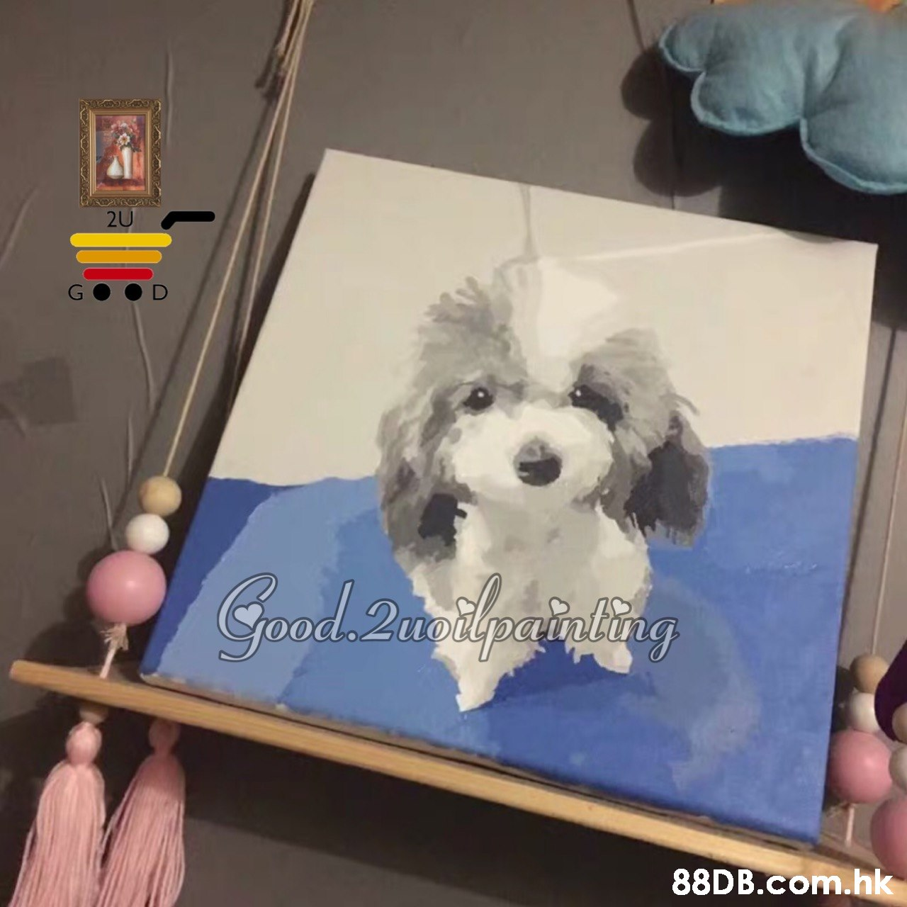 .hk  Dog,Vertebrate,Mammal,Canidae,Dog breed