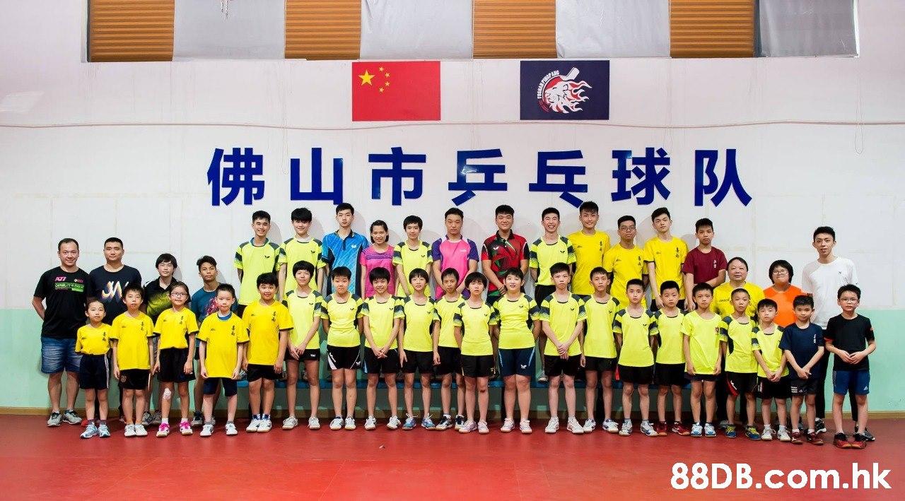 佛山市乒乓球队 .hk  Sports,Team,Team sport,Player,