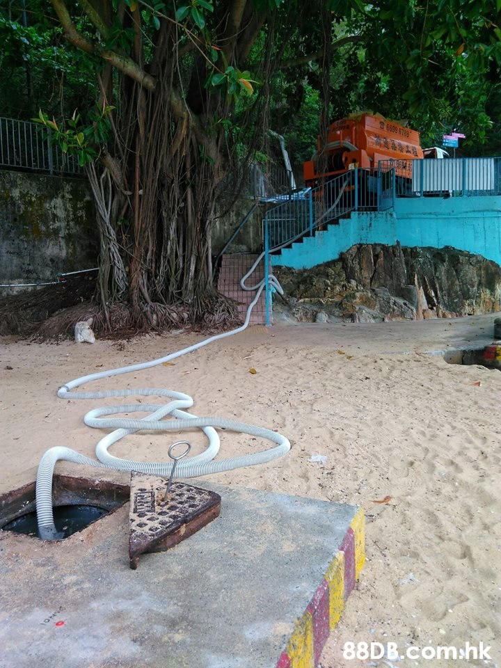 shk  Tree,Leisure,Sand,Chair,Tourism