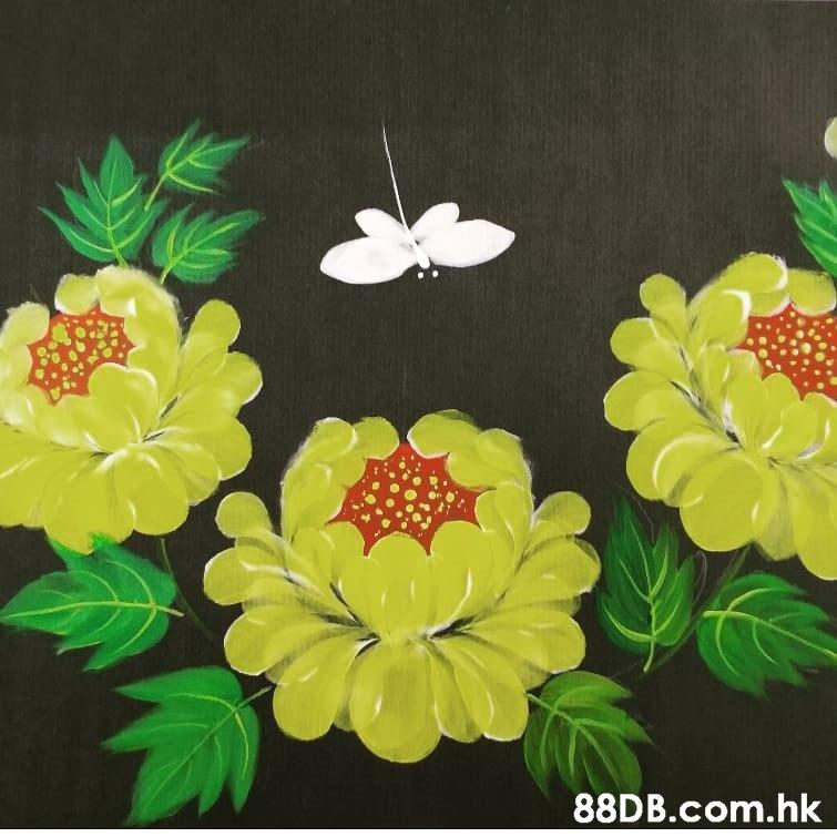 .hk  Leaf,Yellow,Flower,Plant,Visual arts