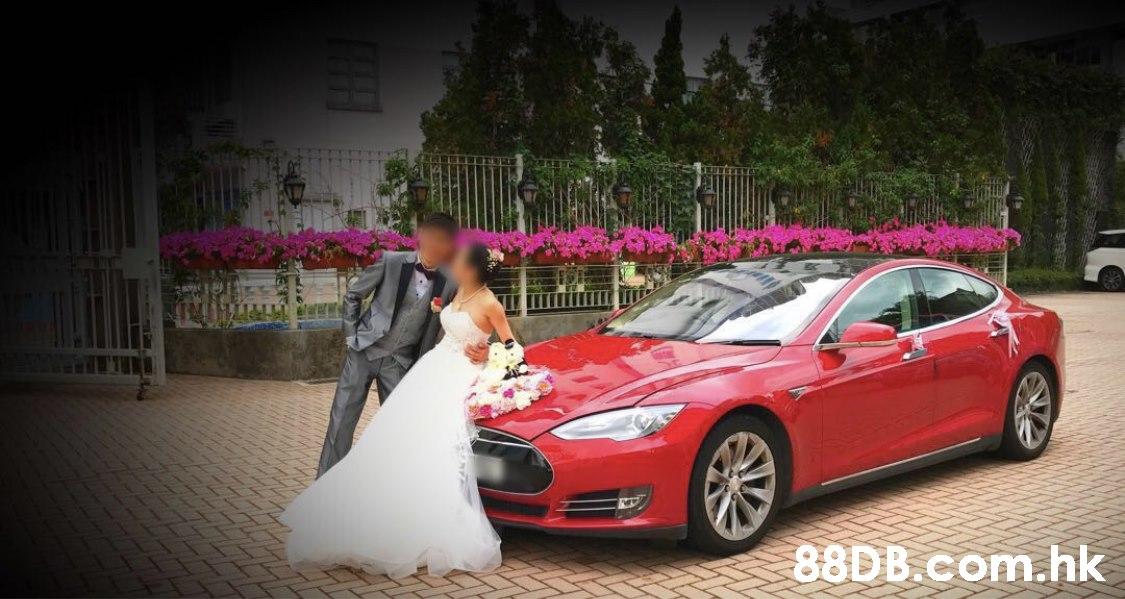 .hk  Land vehicle,Vehicle,Car,Tesla model s,Tesla