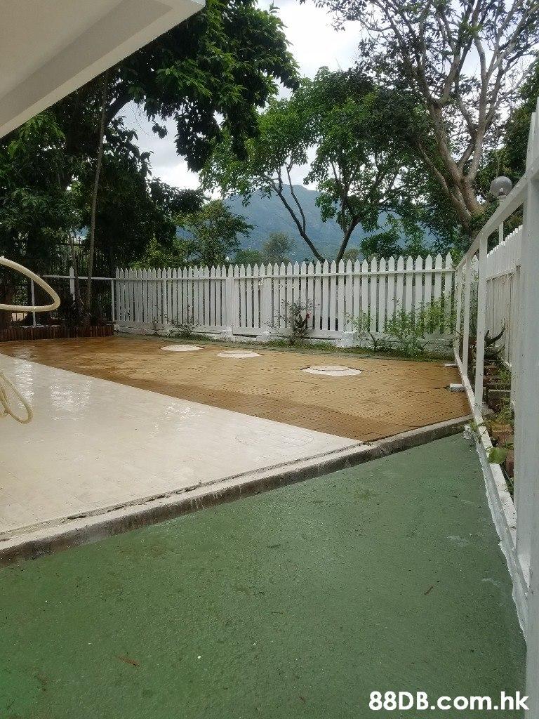 .hk  Property,Grass,Backyard,Fence,Real estate